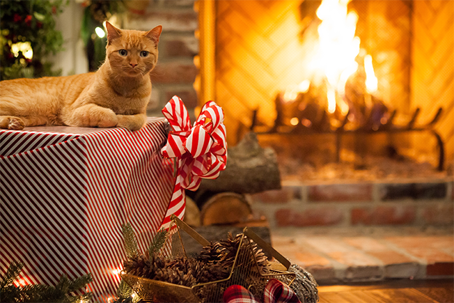 How Yule Log Videos Went From a Quirky Idea to a Hot Marketing ...
