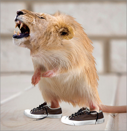 Lion-gerbil