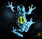 Fringefrog