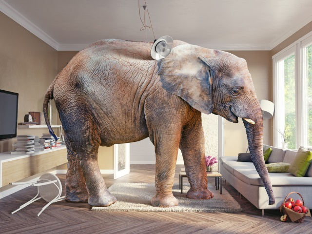Facebook s latest blunder and the elephant in the living room adweek for The elephant in the living room watch online