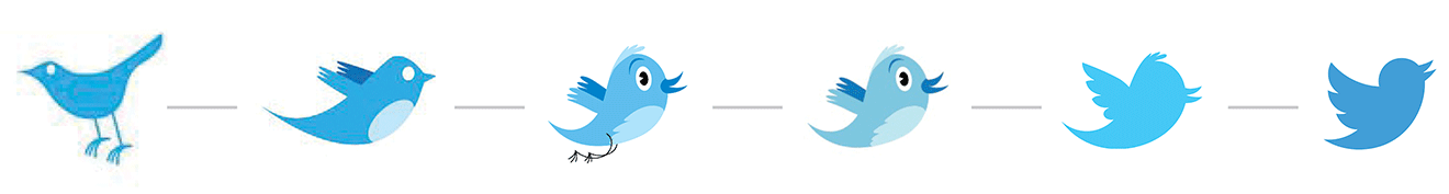 Image result for twitter bird