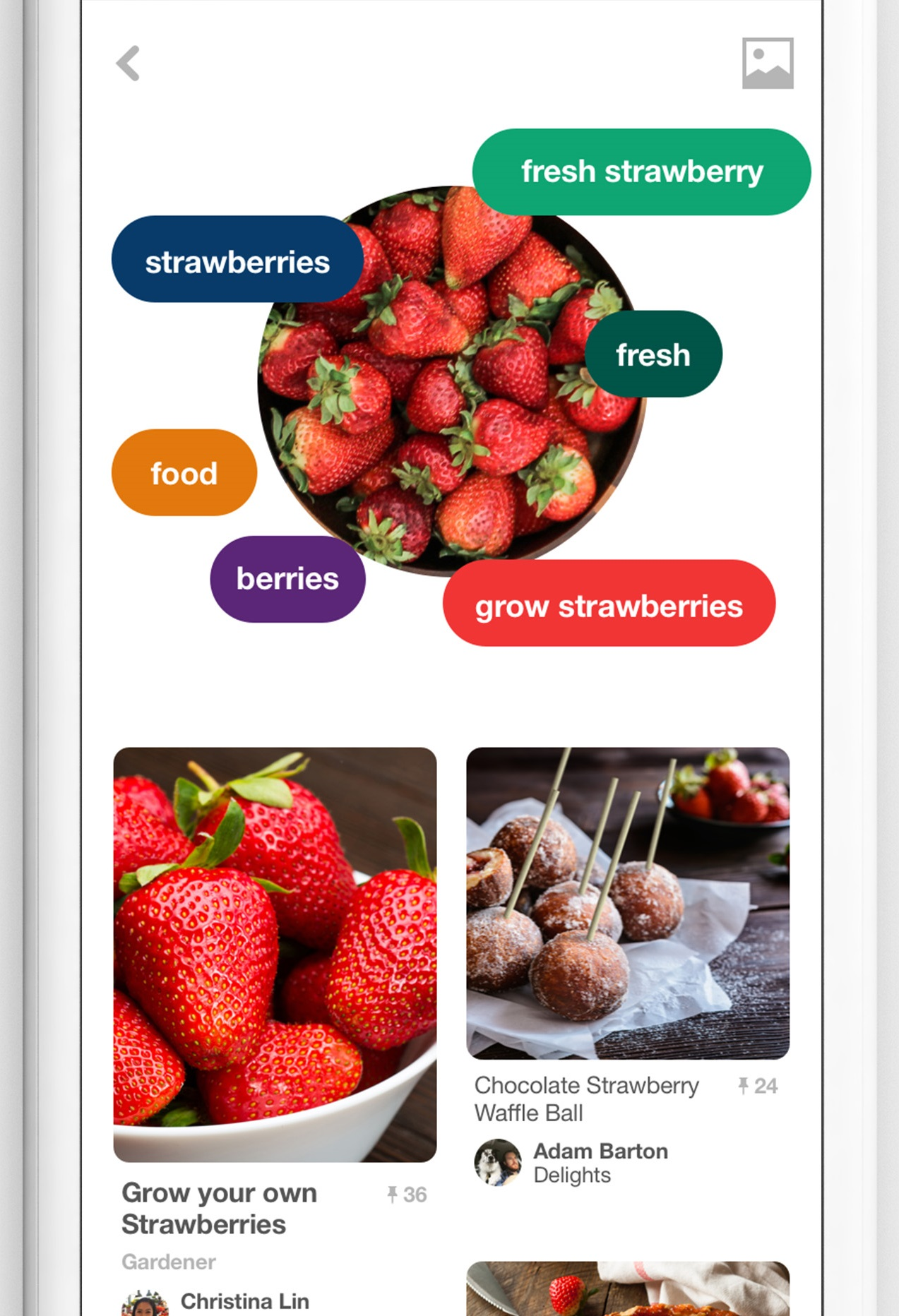 Pinterest just served up better ways to find recipes ingredients pinterest also added new food filters to its search functionality allowing users to find recipes by forumfinder Image collections