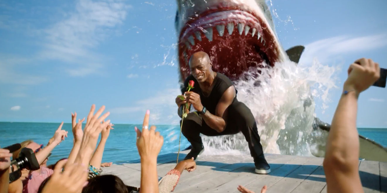 seal gets eaten by a shark in discovery u2019s new ad for shark