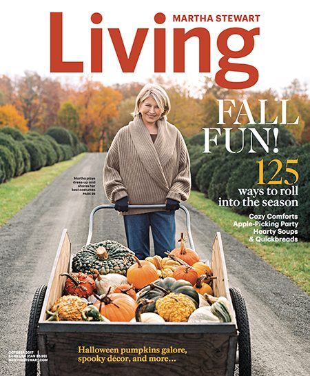 martha stewart living s editor in chief on the magazine s redesign
