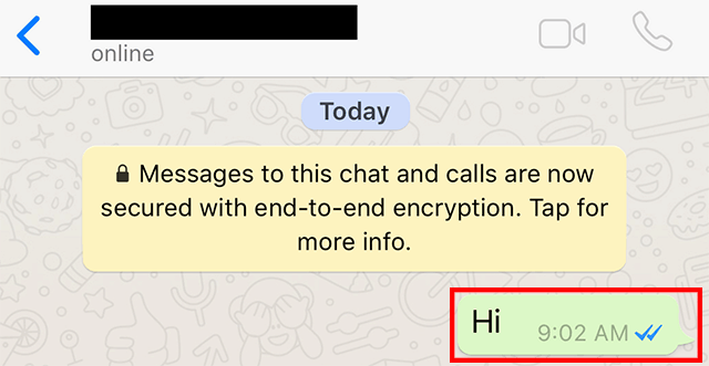 WhatsApp: Here's How to Forward a Message to Another Chat