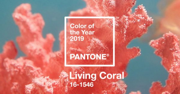 Living coral is pantone s 2019 color of the year adweek - Color for new year 2019 ...