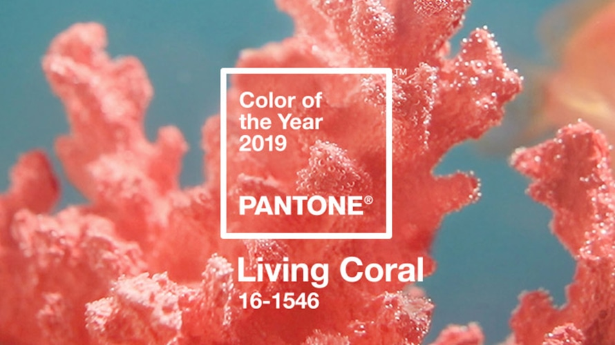 Living coral is pantone s 2019 color of the year adweek - Lucky color of the year 2019 ...