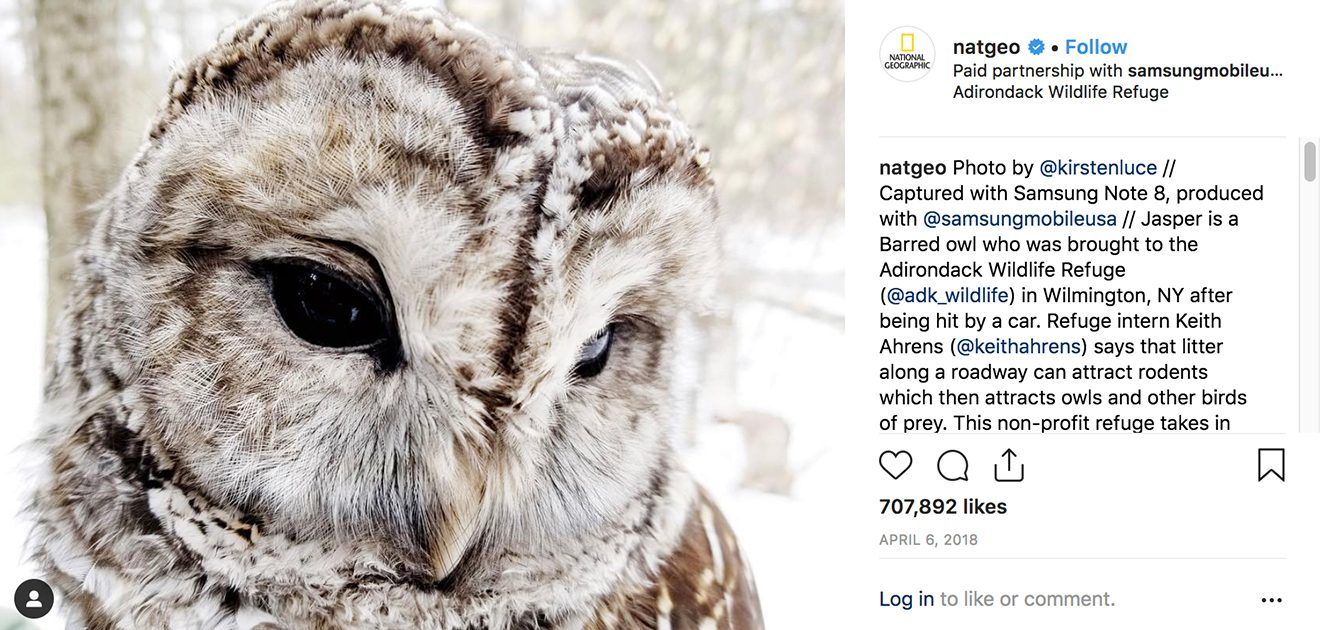 National Geographic Just Became the First Brand to Top 100