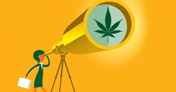 7 Ways Marketers Can Break Into the Cannabis Industry