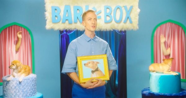 For National Dog Day, BarkBox Will Write a Song Based on a Photo of Your Good Pupper