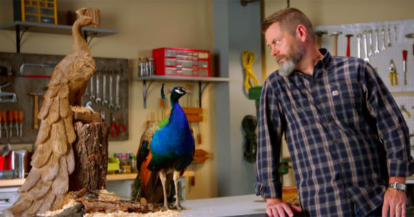 The Peacock Isn't Just NBC's Logo and Streaming Service. In a New Ad, It's Also the Boss