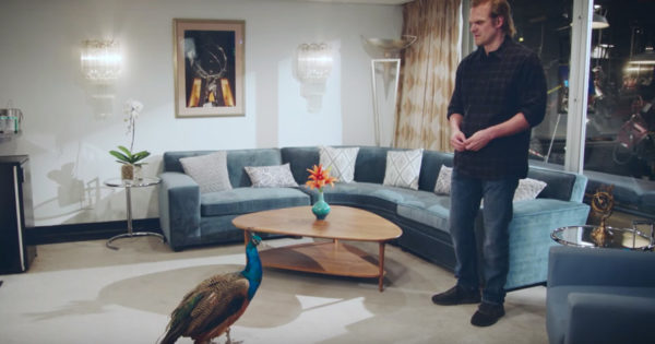 SNL Warns David Harbour Not to Cross NBC's All-Powerful Peacock 'Boss'