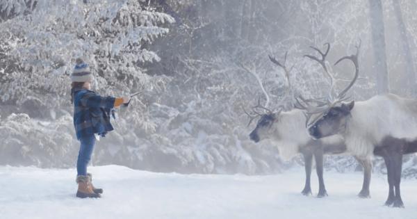 Microsoft Bridges the Reindeer Language Gap in Holiday Ad