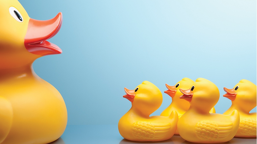 a larger rubber duck with four small rubber ducks looking up to it