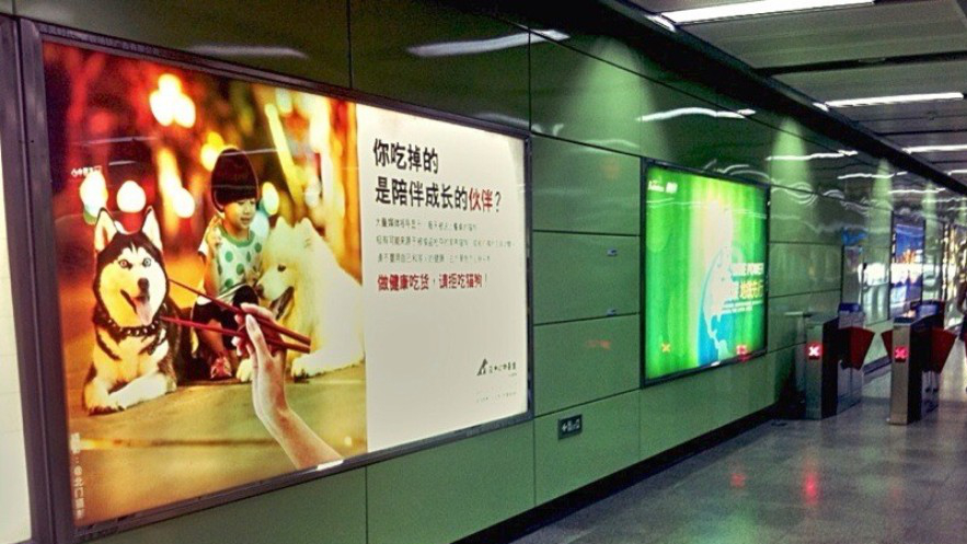 Chinese Ad Campaign Urges People to Stop Eating Dogs and Cats