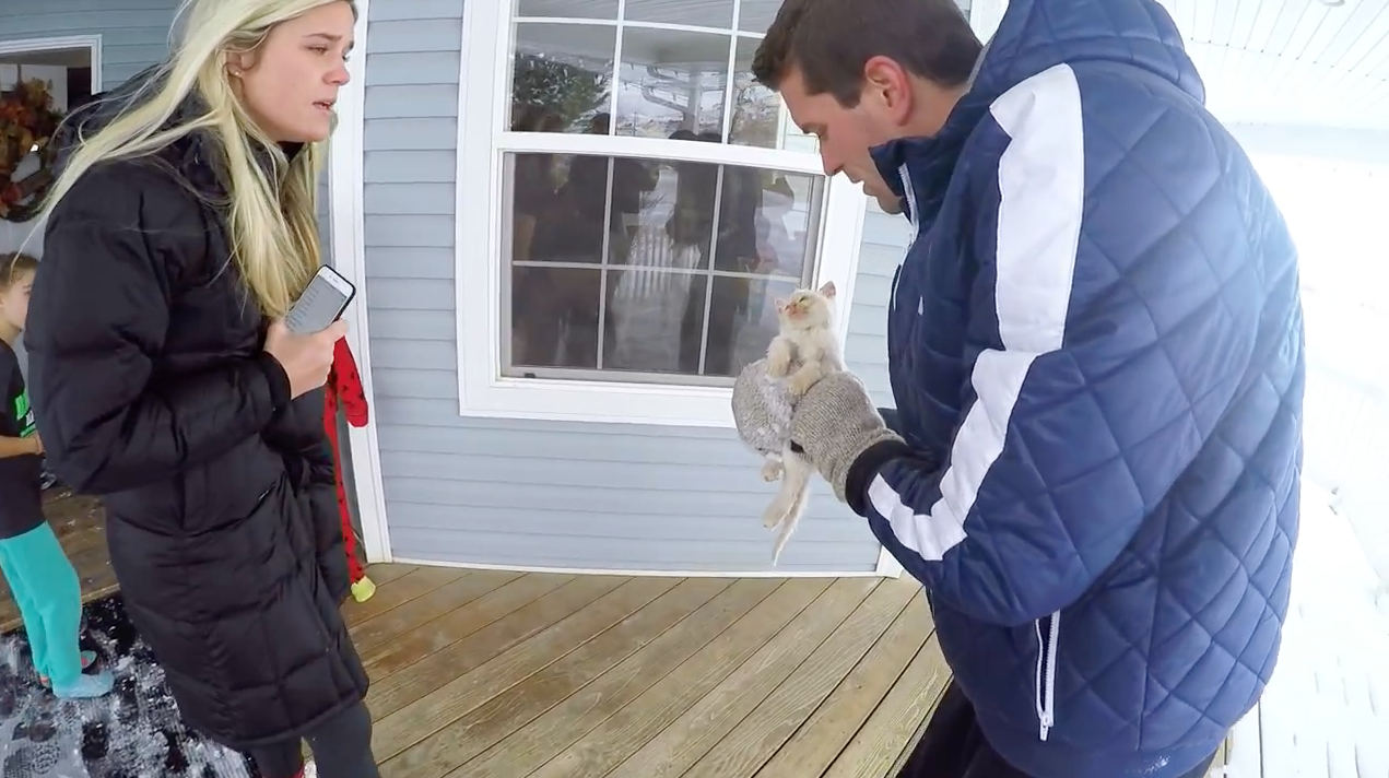GoPro's Year-in-Review Ad Is Action Packed With Sports, Kids and at Least One Undead Kitten