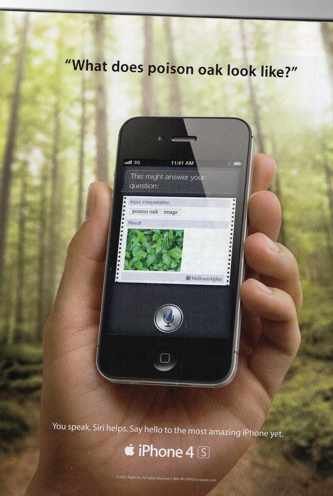 Siri Misidentifies Poison Ivy As Poison Oak In Apple Print Ad Adweek