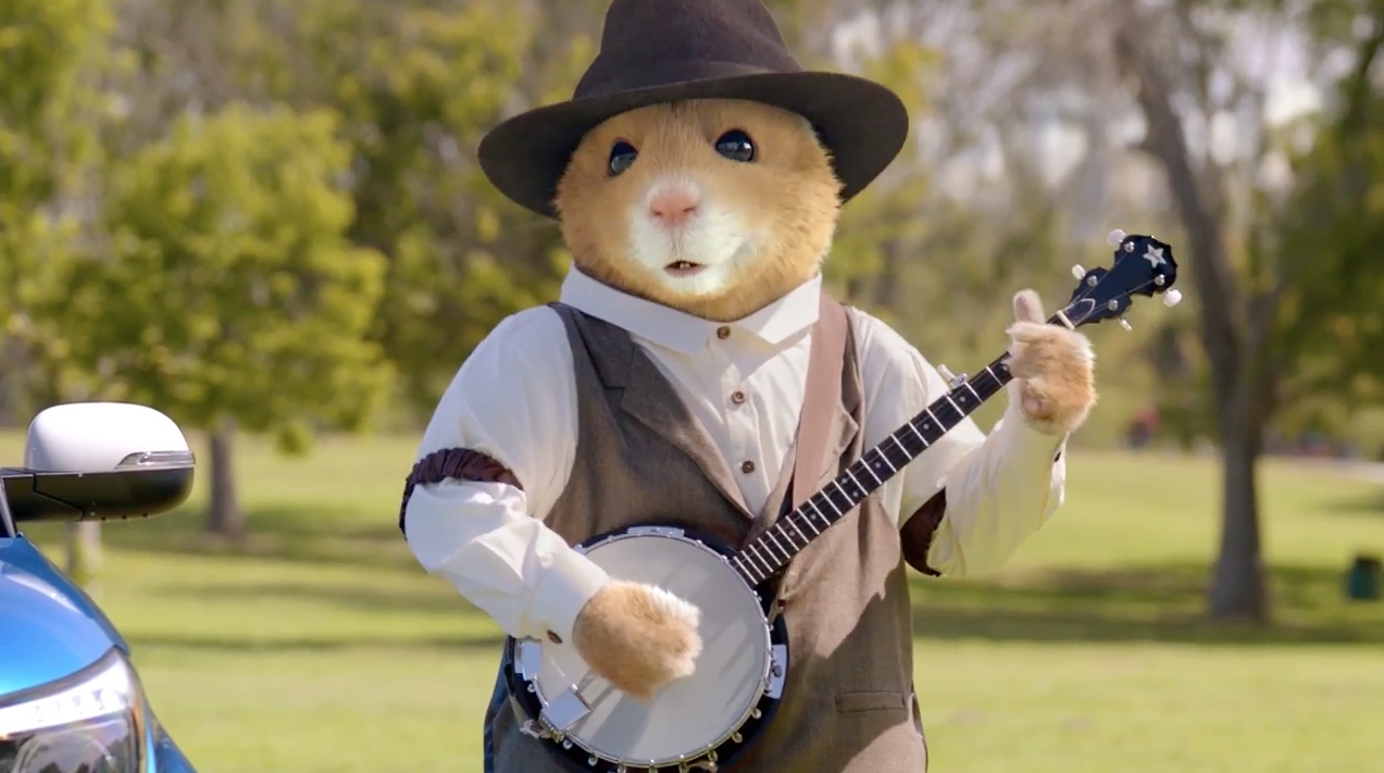 Rodents And Humans Make Beautiful Music Together