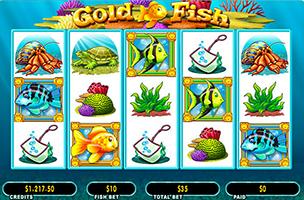 Fish casino slots dimpled slotted rotors reviews